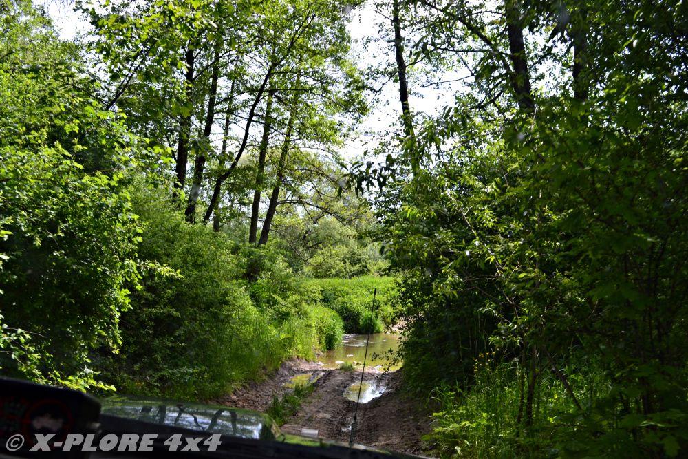 zalana droga leśna